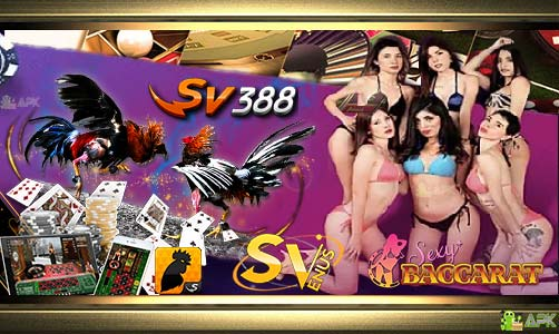 SV388 : Sabung Ayam · Sexy Baccarat · Venus Casino Online